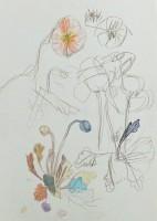 http://www.soyunglee.com/files/gimgs/th-150_IMG_3348-_v2.jpg